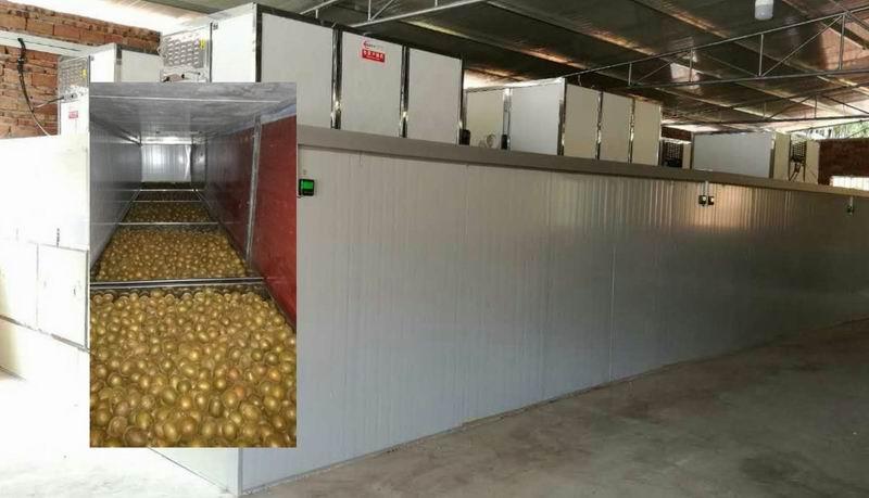 罗汉果隧道式干燥机生产线